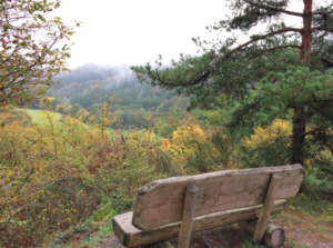 Trailrunweekend Duitsland