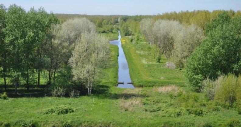 Noorderbos Houtrakpolder